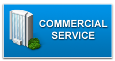providing professional commercial services